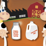 Organic Raw VS Pasteurized Milk