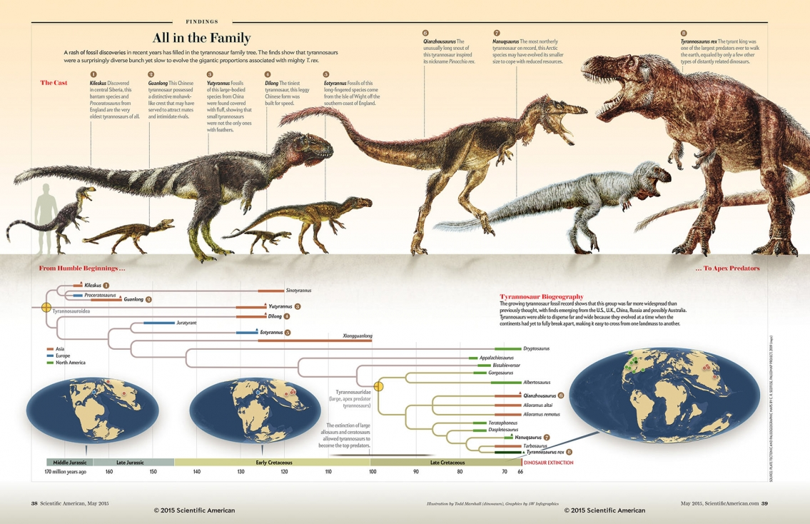Tyrannosaurs All in the family - Dinosaur Infographic