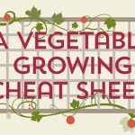 The Vegetable Growing Cheat Sheet