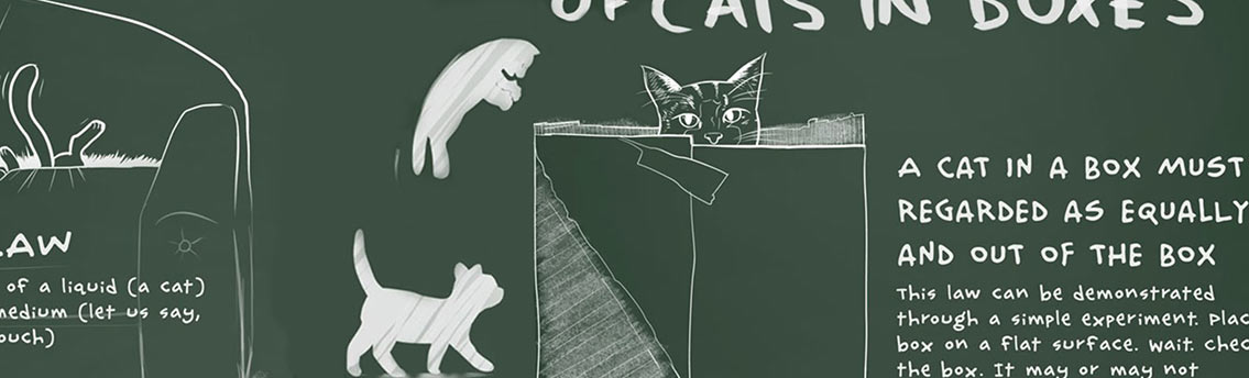 Cat Physics Science Infographic