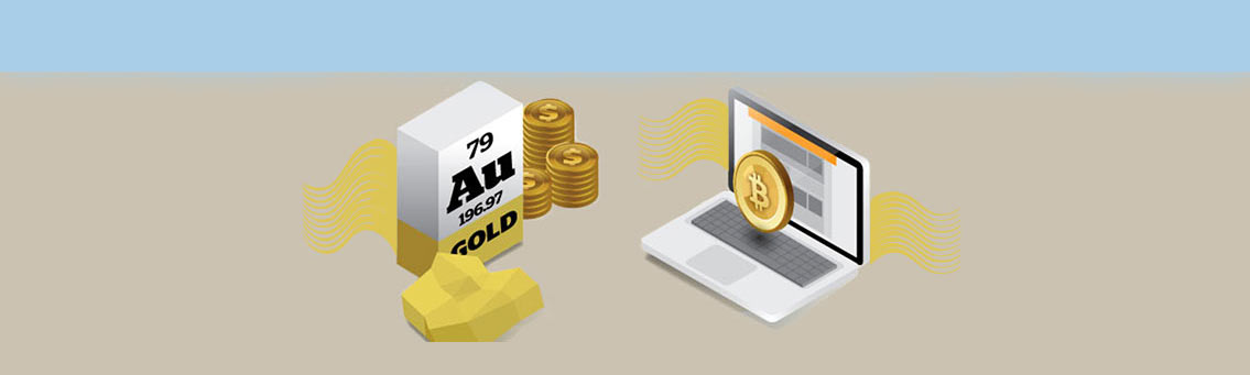 Bitcoin vs Gold Investment Infographic