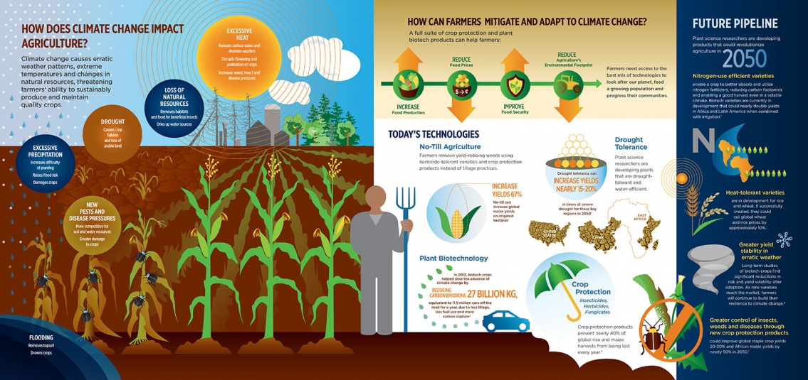 How Does Climate Change Affect Agriculture Infographic