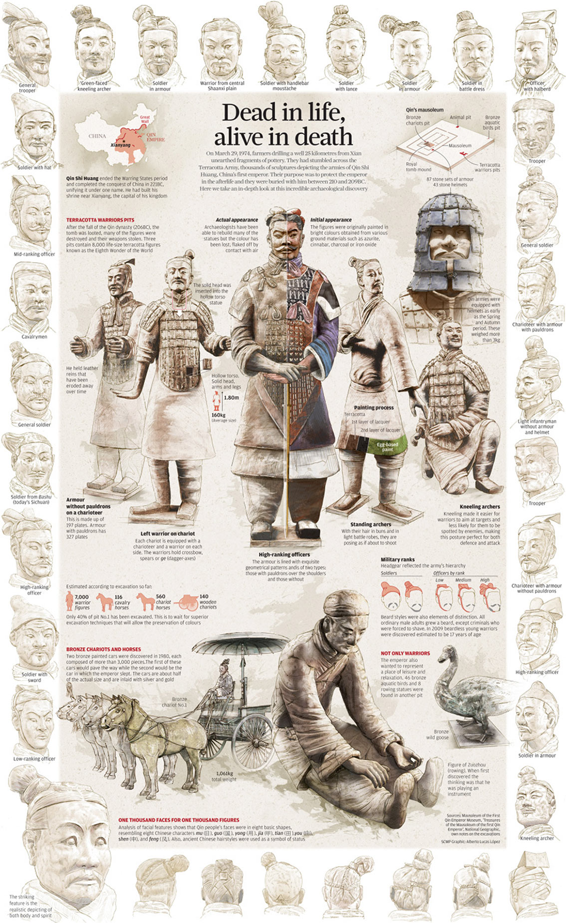 Terracotta Warriors Facts and Information Infographic