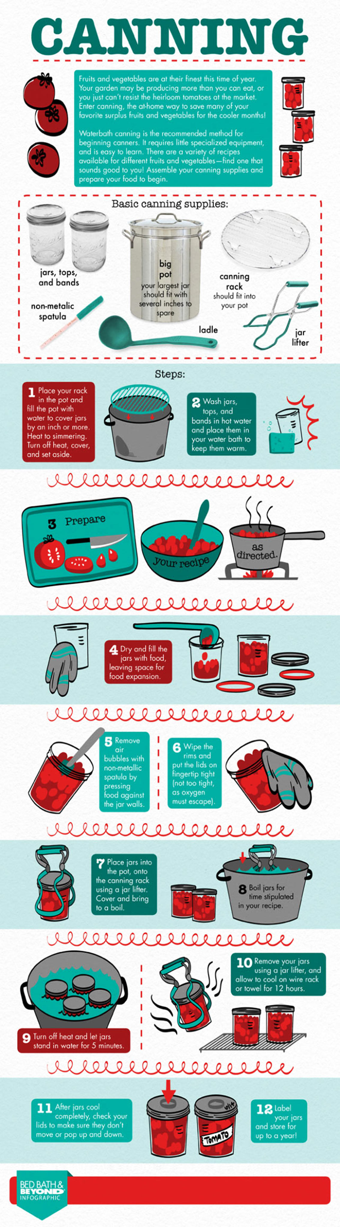 Canning Process for Food Preservation Infographic