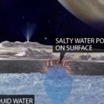 The Potential of Alien Life within Jupiter's Moon Europa