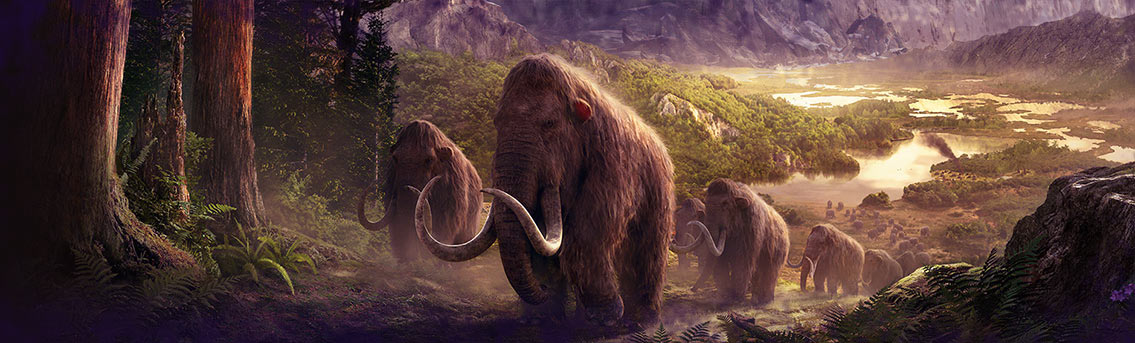Woolly Mammoth Cloning Biology Infographic