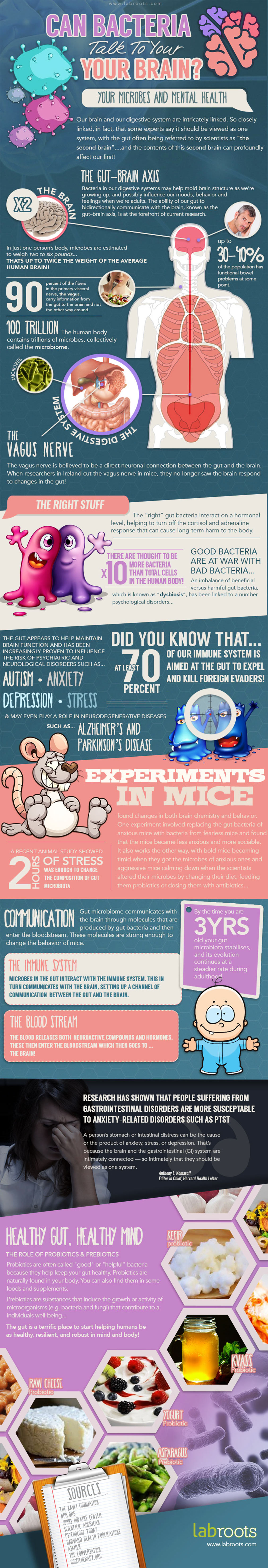 Gut Bacteria and Mental Health - Brain Infographic