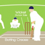 Learn to Play Cricket