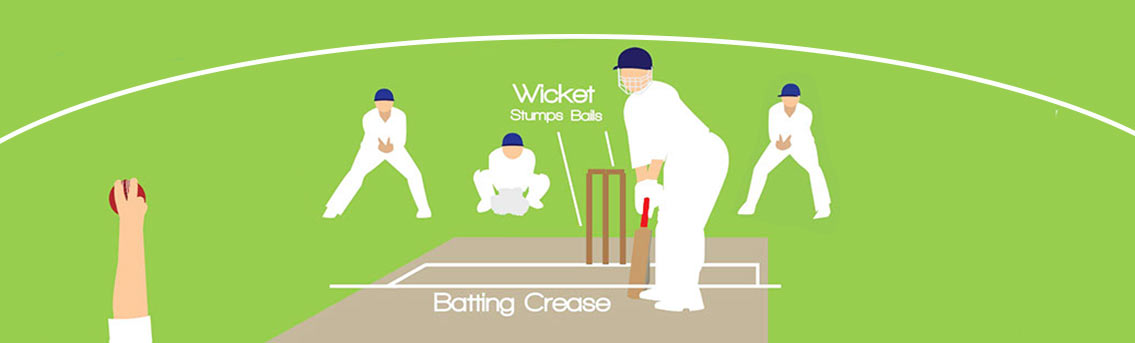 Game Rules of Cricket Infographic