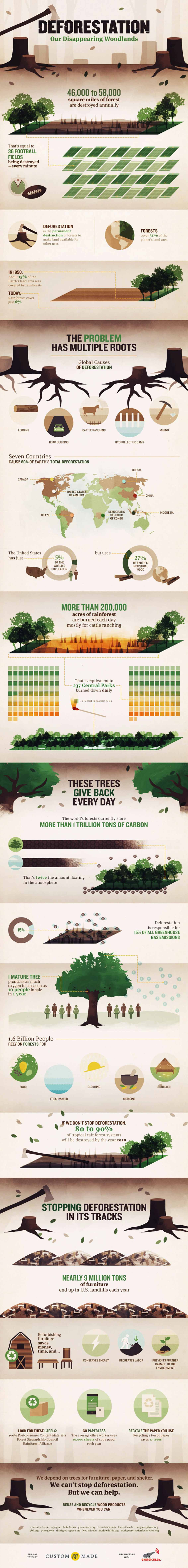 Negative Impacts of Deforestation Environmental Infographic