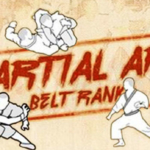 Martial Arts Belts in Order