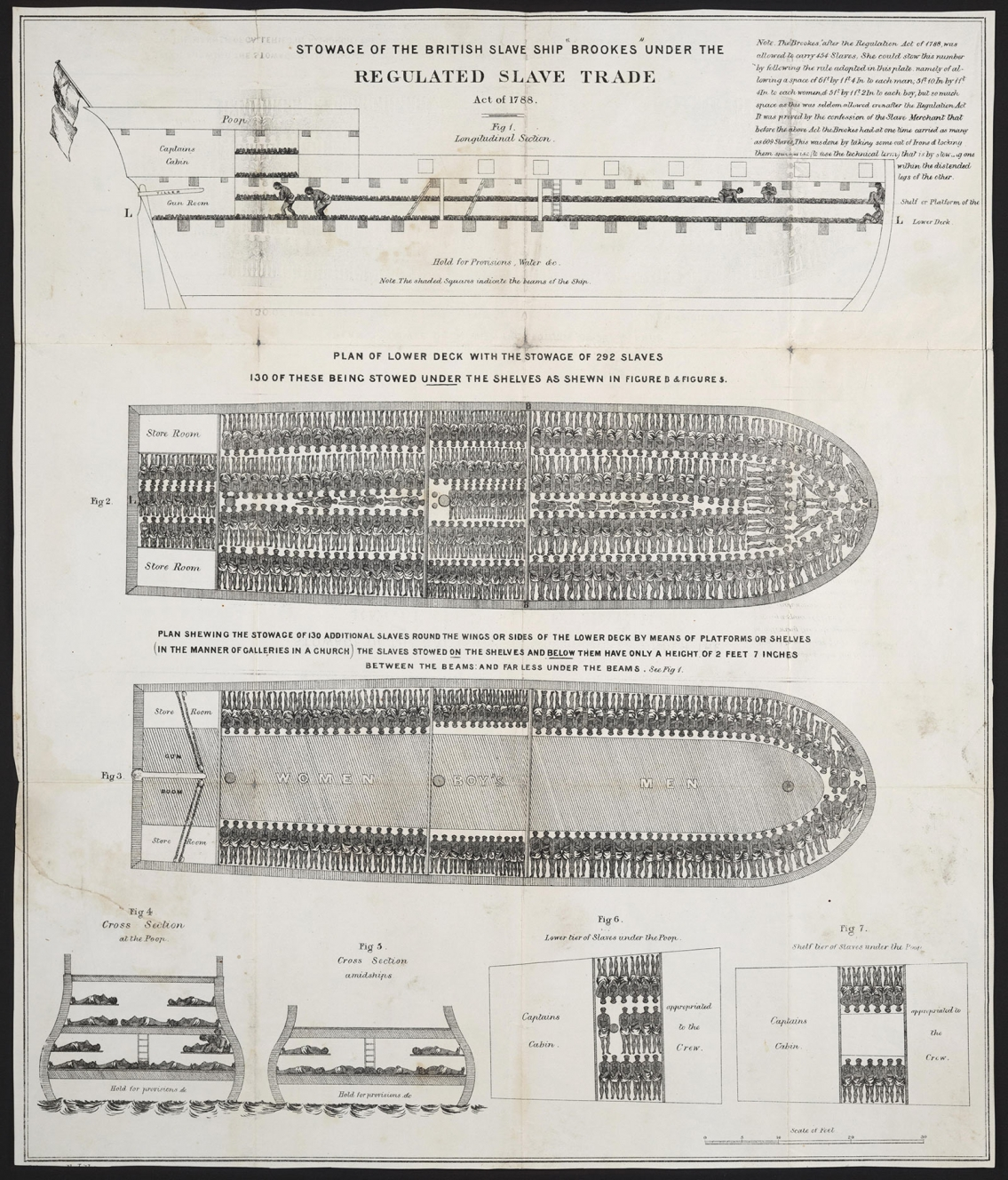 Regulated Slave Trade - Stowage of the British Slave Ship, 1788