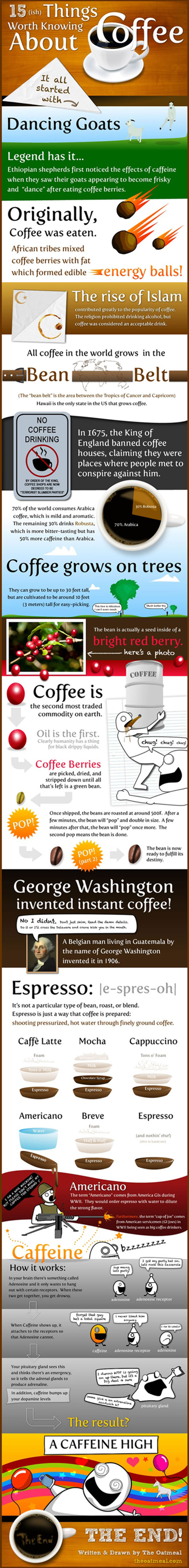 15 Things Worth Knowing about Coffee Infographic