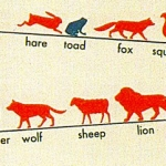 How Long Do Animals Live (1939)