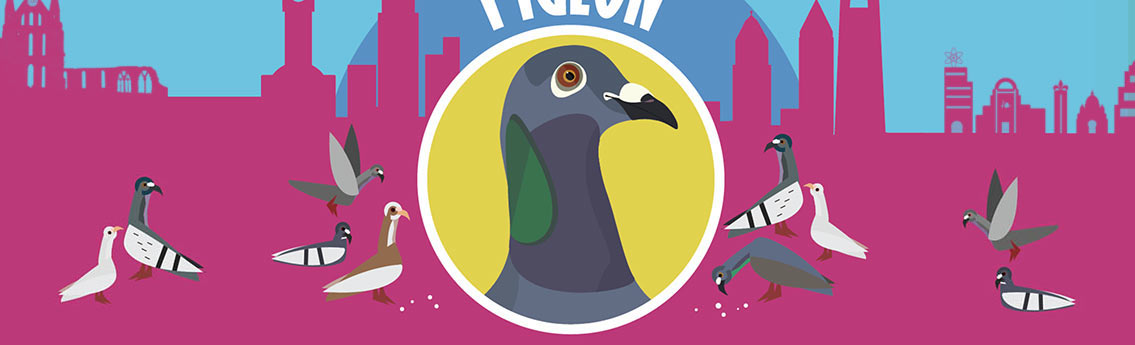 Pigeons Facts