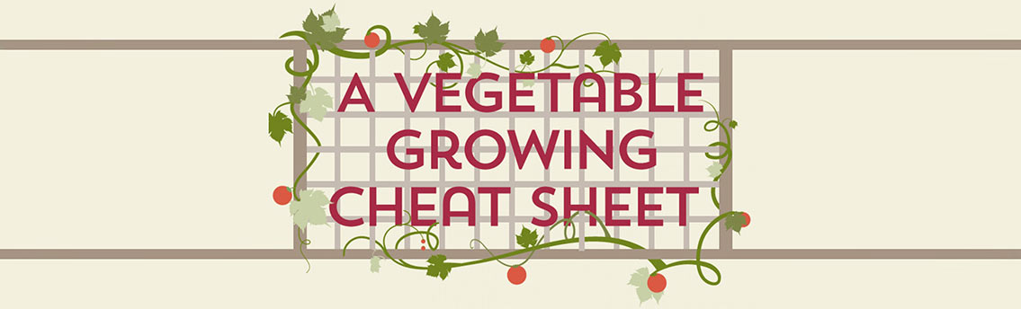 Vegetable Growing Cheat Sheet