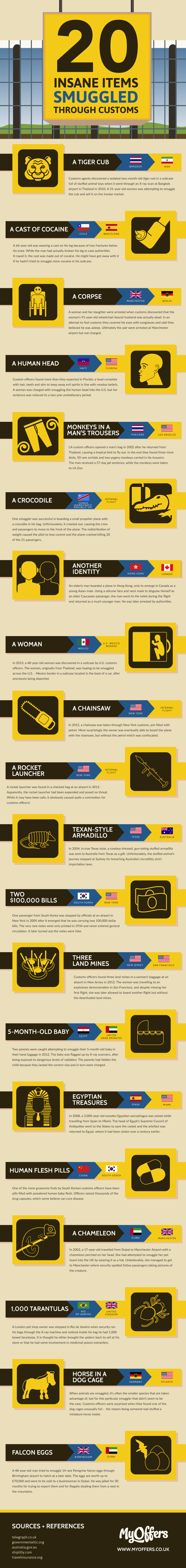20 Insane Items Smuggled Through Customs Infographic