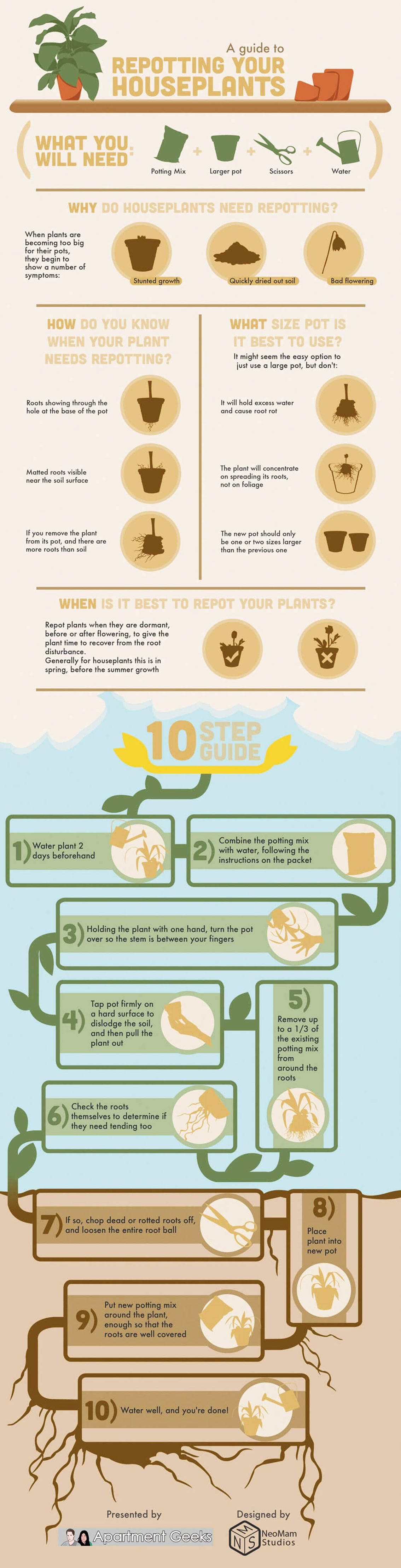 Guide to Repotting Indoor Plants Infographic