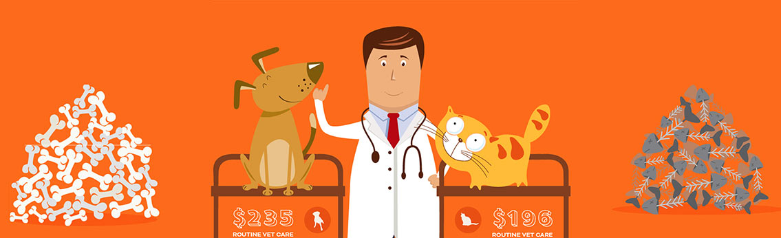 Pet Insurance Facts and Figures Infographics