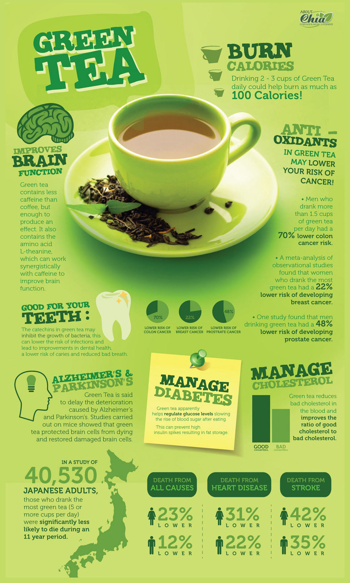 The Benefits of Green Tea Infographic