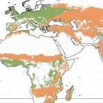 How Does Climate Change Affect Agriculture