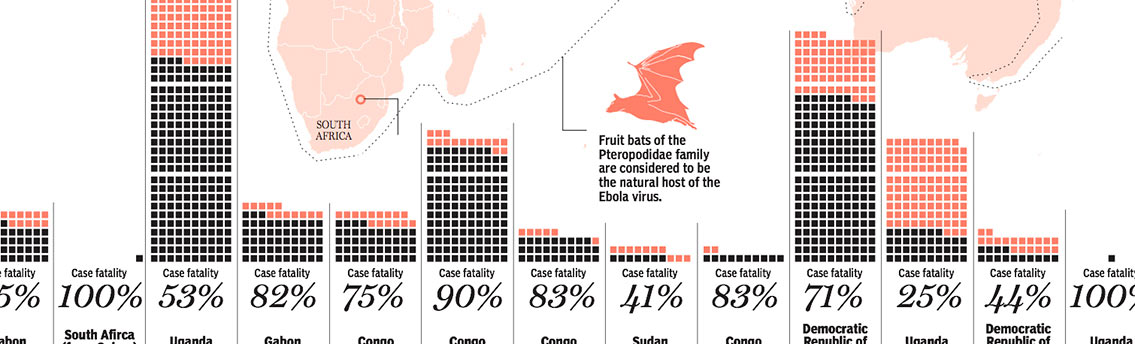 Origin of Ebola Virus Disease Infographic
