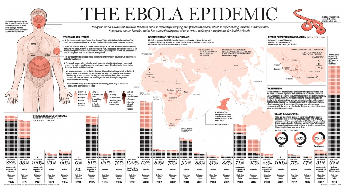 The Ebola Virus Epidemic Timeline Infographic