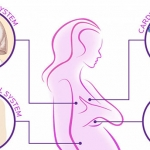 34 Body Changes When You're Pregnant