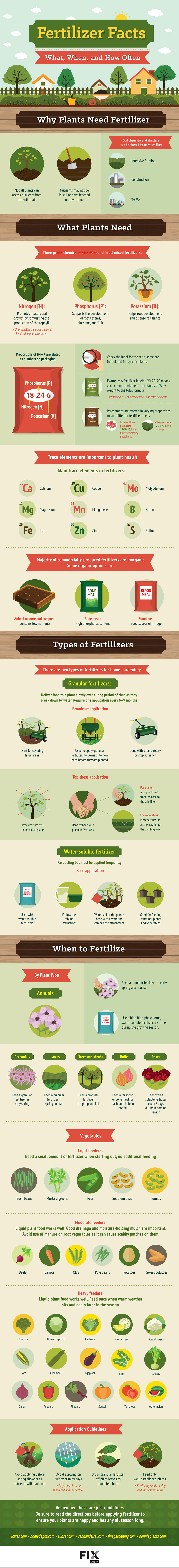 Fertilizer Facts What When and How Often Gardening Infographic