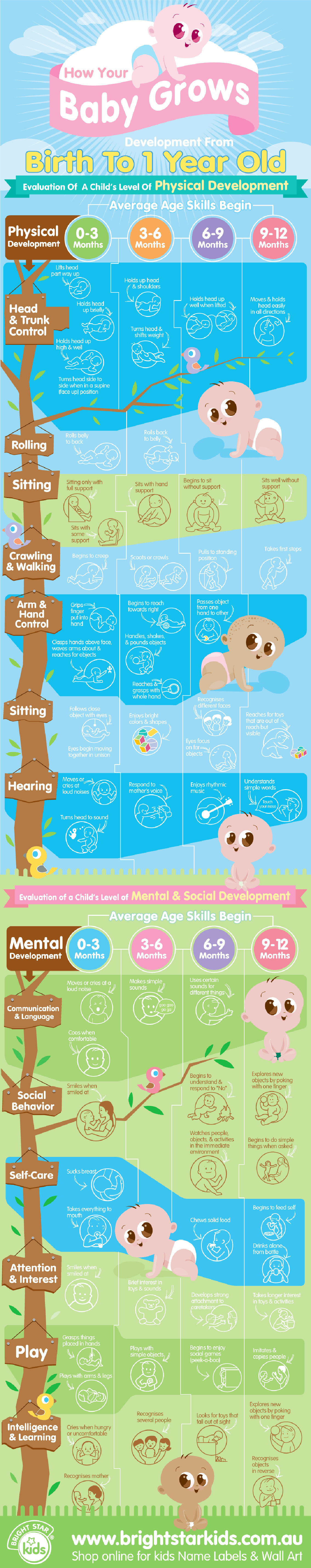 How Your Baby Grow From Birth to 1 Year Old Infographic
