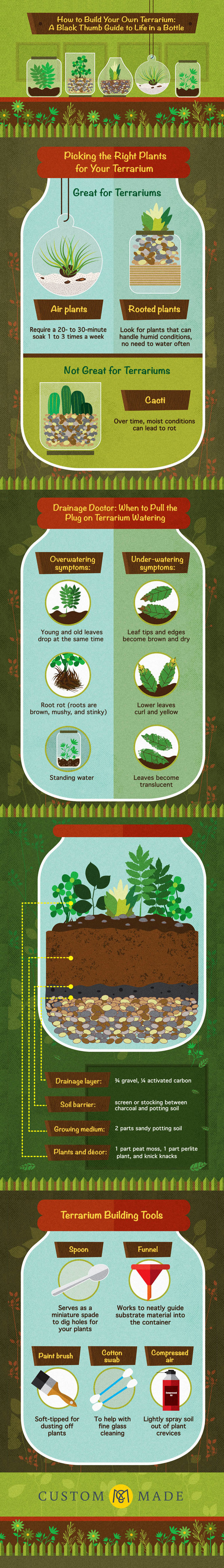 How to Make a Plant Terrarium - Gardening Infographic