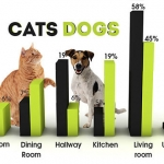 Cats or Dogs: Who Does the Most Damage to Your Home