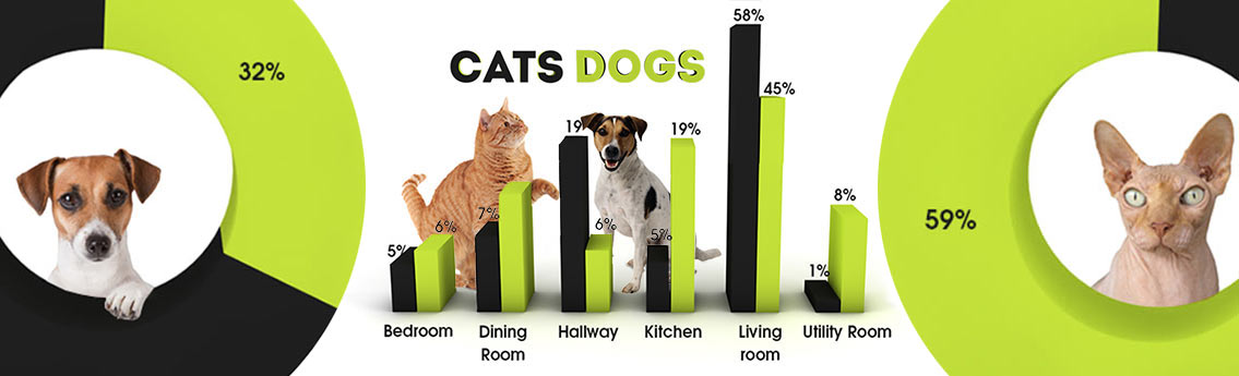 Cat and Dog Damage Pet Infographic