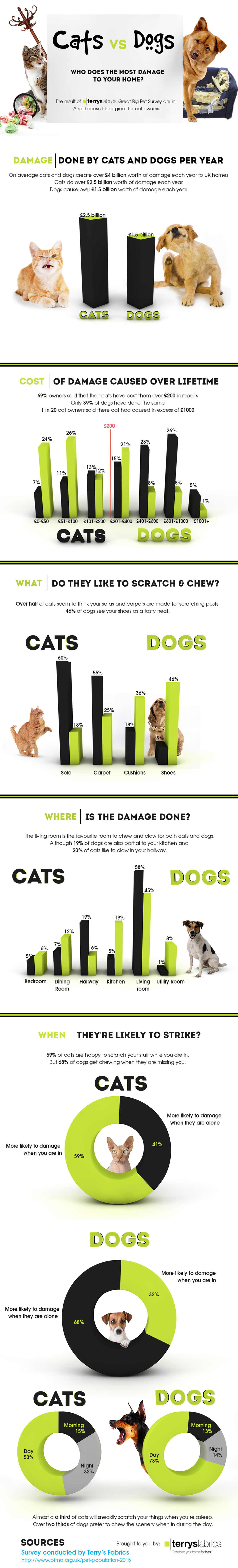 Cats or Dogs Who Does the Most Damage to Your Home - Pet Infographic