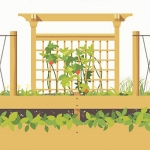 Vertical Gardening: Save Space by Growing Up