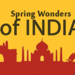 7 Budget Trips in India during Spring