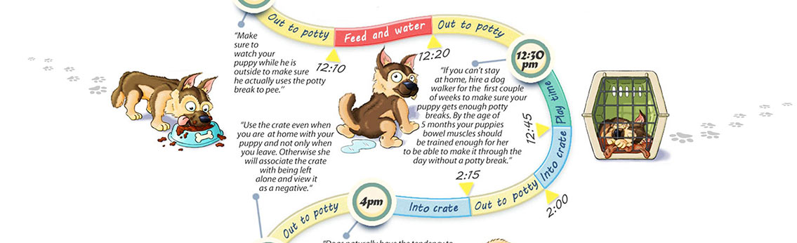 Dog Potty Training Schedule