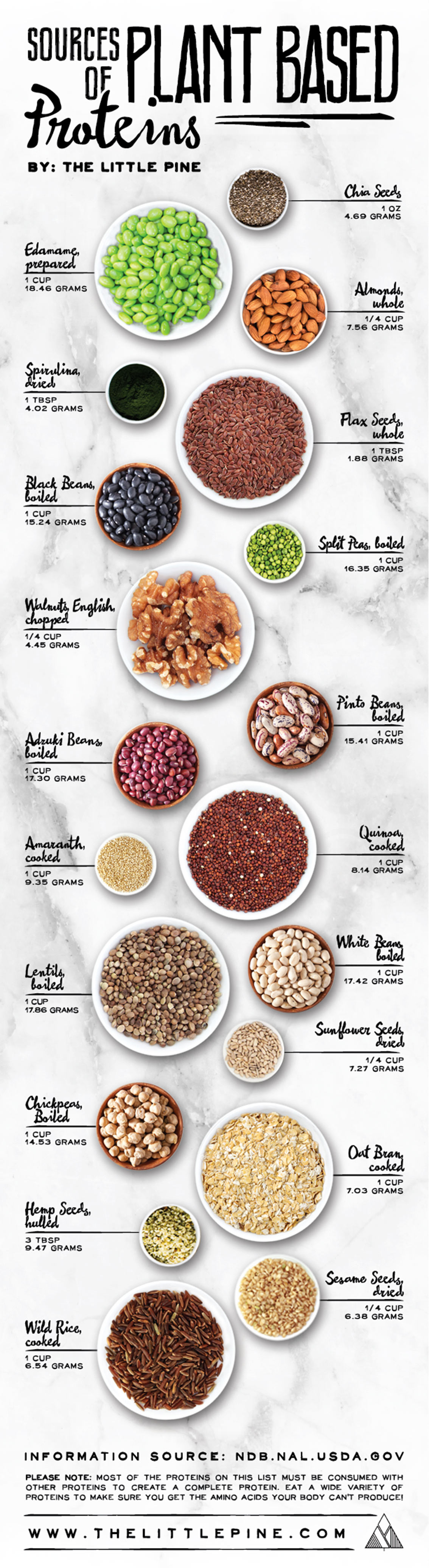Best Sources of Plant Based Protein - Vegan Infographic