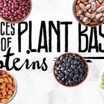 20 Best Sources of Plant Based Protein