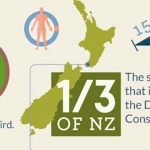 30 Interesting Facts About New Zealand